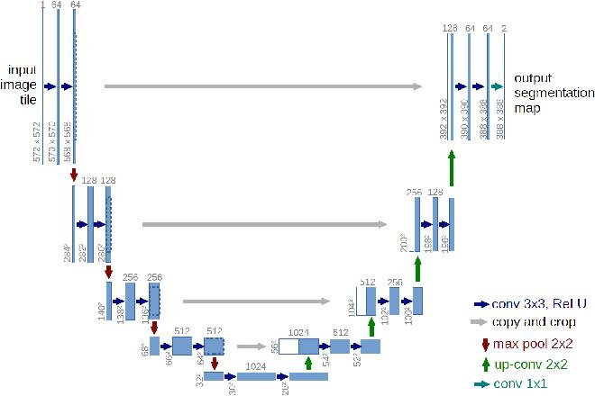 Figure 2 for Towards whole-body CT Bone Segmentation