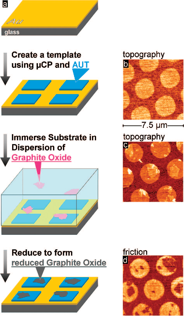 The assembly of single-layer graphene oxide and graphene using ...