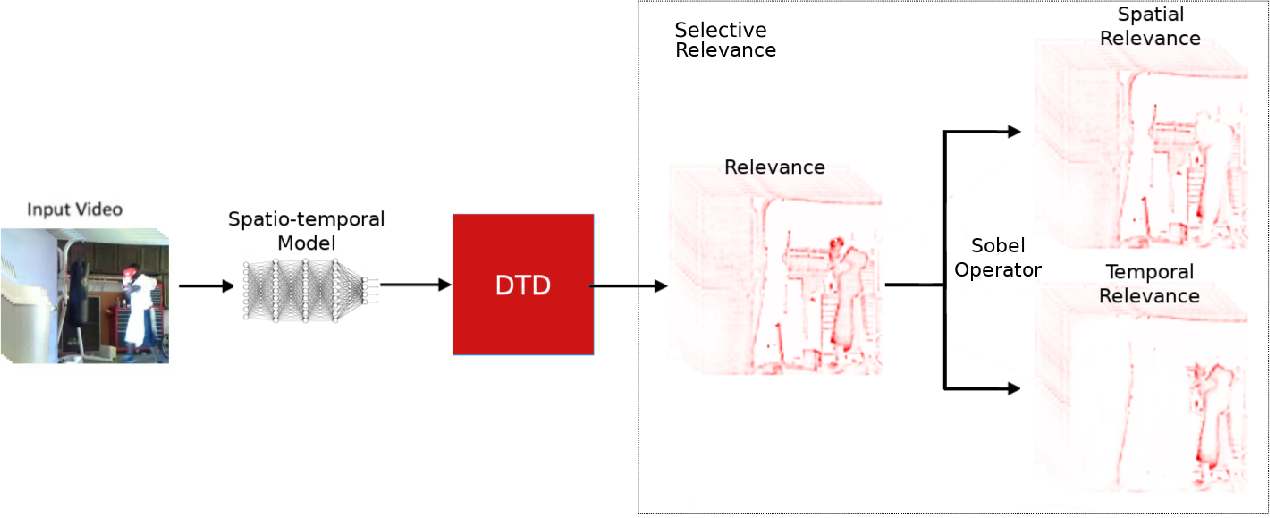 Figure 1 for Explaining Motion Relevance for Activity Recognition in Video Deep Learning Models