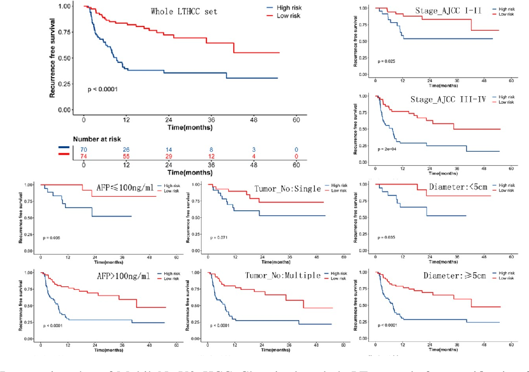 Figure 3 for Deep learning for prediction of hepatocellular carcinoma recurrence after resection or liver transplantation: a discovery and validation study