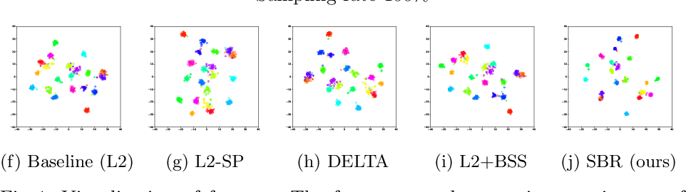 Figure 3 for Sample-based Regularization: A Transfer Learning Strategy Toward Better Generalization