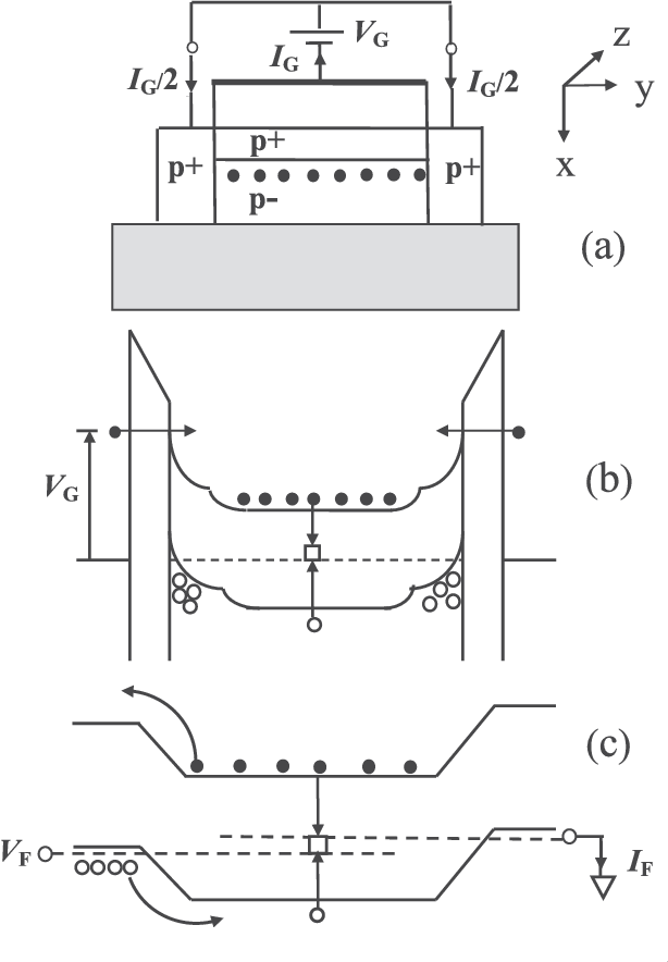 FIG. 6. (a) Simplified cross-sectional view of a planar SOI pMOST (pþ/n/ pþ or pþ/p /pþ) under NBTI stress conditions. The view is similar to the wrapped gate FinFET case and is used here for simplicity to illustrate the physics. The solid dots represent the electrons tunneled into the p-body from the gate and accumulated at the center of the fin. The electrons tunneling from the gate exit the floating p-body through the pþ source and drain. (b) Band diagram along the x-directions into the fin p-body for a negative VG. The open circles show hole accumulation at the fin surfaces. The electrons tunneling from the gate into the floating body are swept to the middle of the fin by the electric field. The vertical arrows show a possible recombination of the electrons injected from the gate with the holes in the fin p-body. (c) Simplified band diagram of a long-channel pþ/p /pþ structure in the center of the fin along the z-direction from source to drain under small forward bias VF.