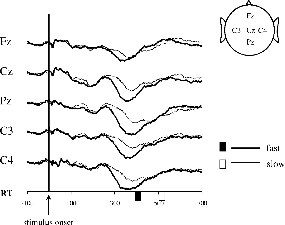 Changes In The Somatosensory N250 And P300 By The Variation Of
