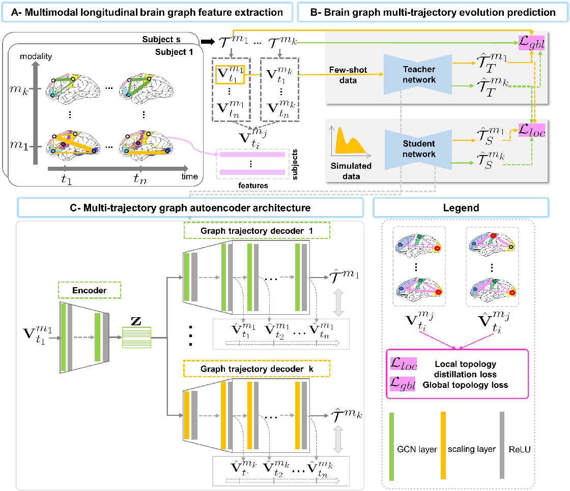 Figure 2 for A Few-shot Learning Graph Multi-Trajectory Evolution Network for Forecasting Multimodal Baby Connectivity Development from a Baseline Timepoint