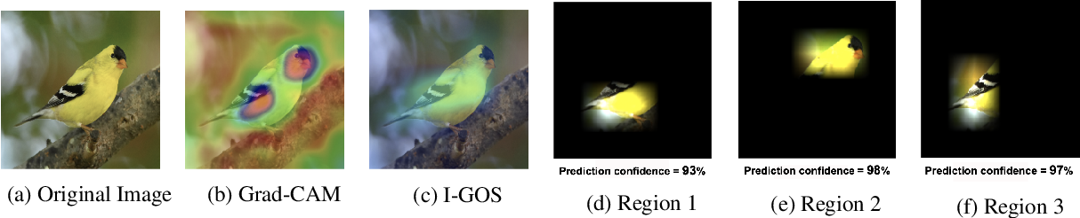 Figure 1 for Structured Attention Graphs for Understanding Deep Image Classifications