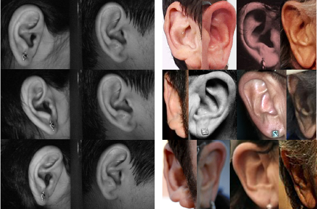 Figure 1 for The Unconstrained Ear Recognition Challenge 2019 - ArXiv Version With Appendix