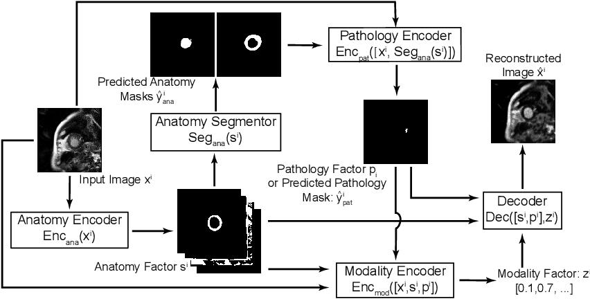 Figure 3 for Semi-supervised Pathology Segmentation with Disentangled Representations