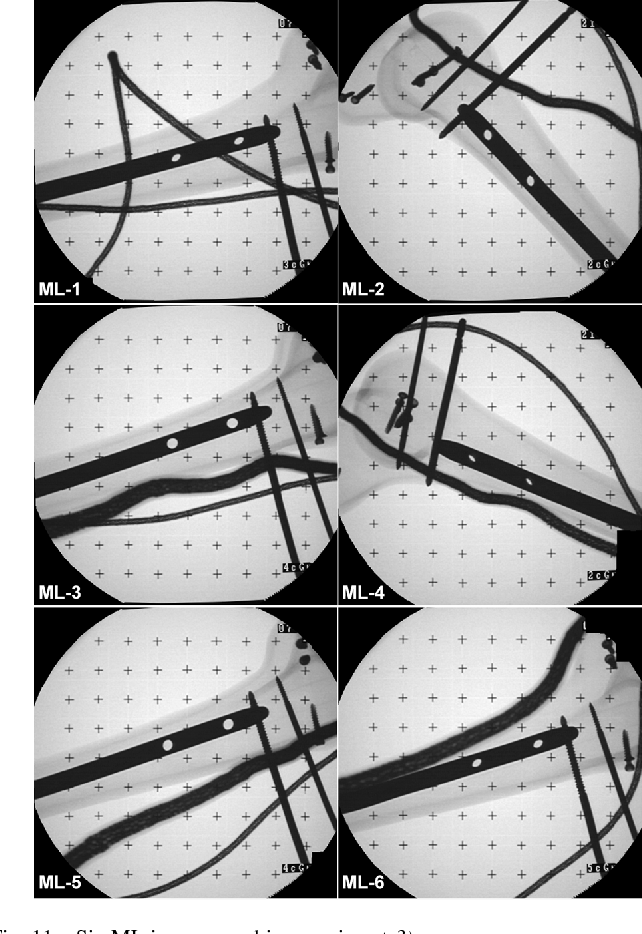Fig. 11. Six ML images used in experiment 3).