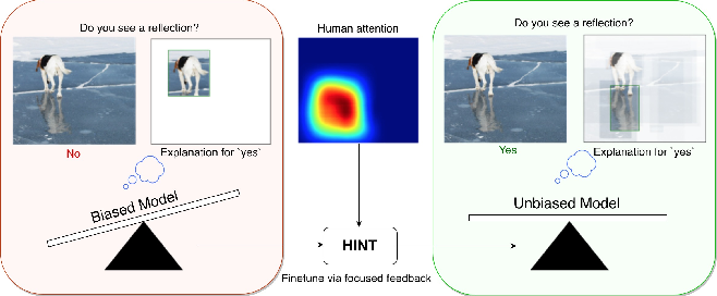Figure 1 for Taking a HINT: Leveraging Explanations to Make Vision and Language Models More Grounded