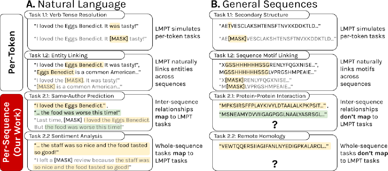 Figure 1 for Rethinking Relational Encoding in Language Model: Pre-Training for General Sequences