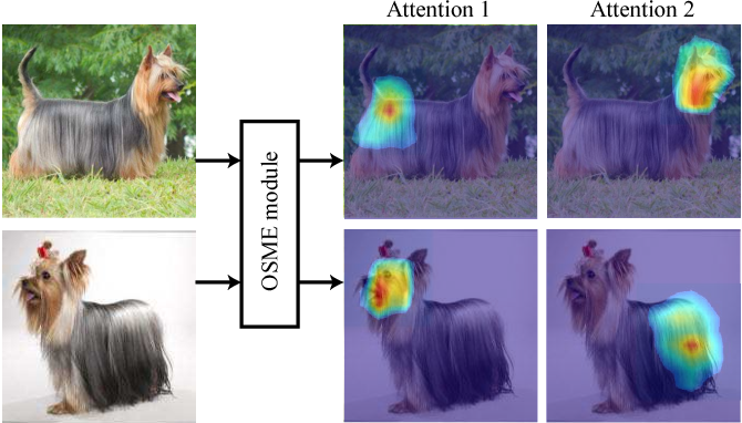 Figure 1 for Multi-Attention Multi-Class Constraint for Fine-grained Image Recognition