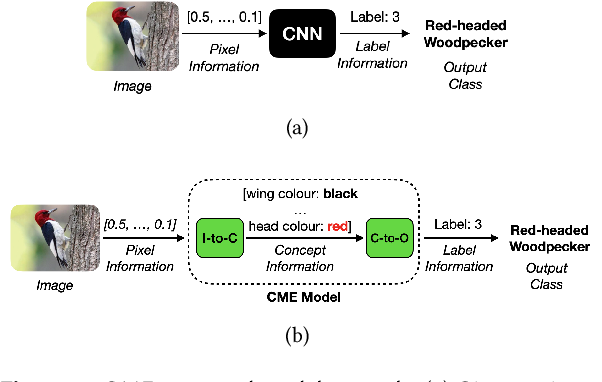 Figure 1 for Now You See Me (CME): Concept-based Model Extraction