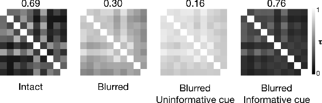 Figure 4 for The functional role of cue-driven feature-based feedback in object recognition