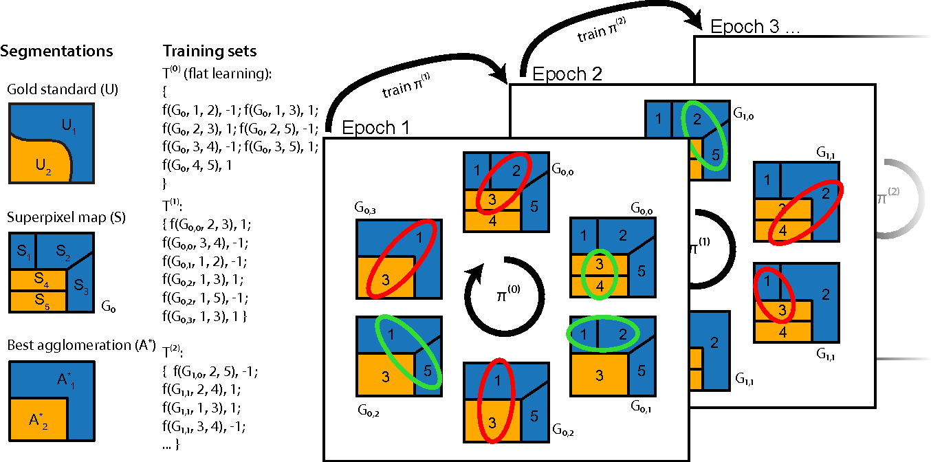 Figure 4 for Machine learning of hierarchical clustering to segment 2D and 3D images
