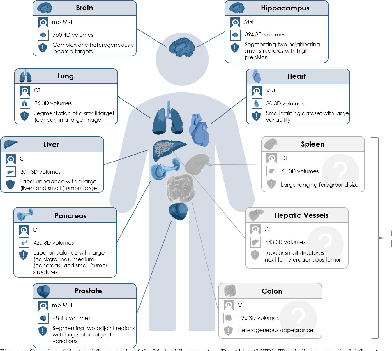 Figure 1 for The Medical Segmentation Decathlon
