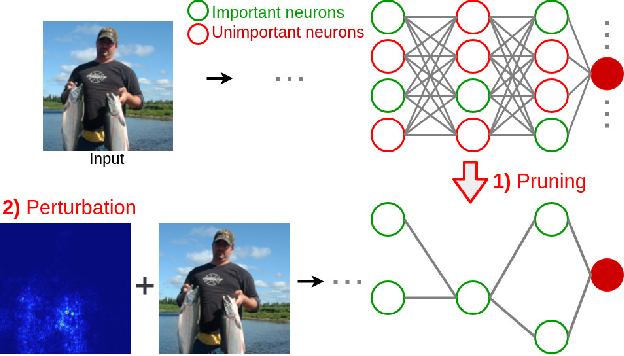Figure 1 for Explaining Neural Networks via Perturbing Important Learned Features