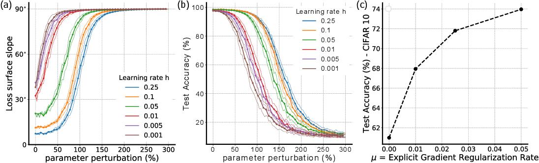 Figure 3 for Implicit Gradient Regularization