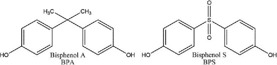 High Levels of Bisphenol A and Bisphenol S in Brazilian