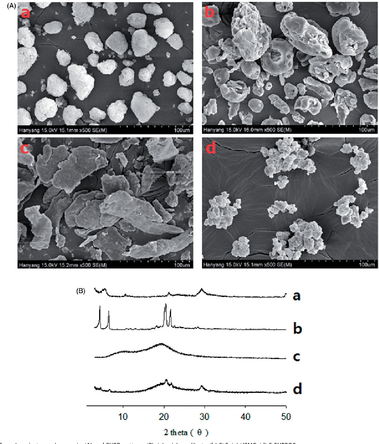 Figure 3. Scanning electron micrographs (A) and PXRD patterns (B): (a) calcium silicate; (b) SLS; (c) HPMC; (d) S-SNEDDS.