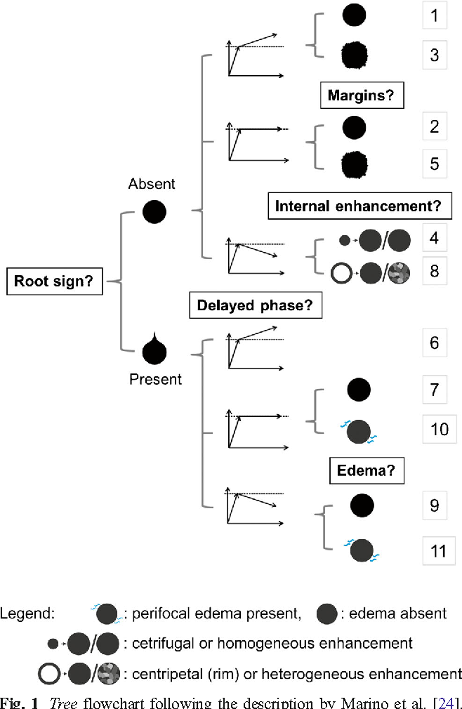 Figure 1 From A Simple Classification System The Tree Flowchart