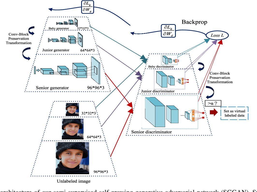 Figure 1 for Semi-Supervised Self-Growing Generative Adversarial Networks for Image Recognition