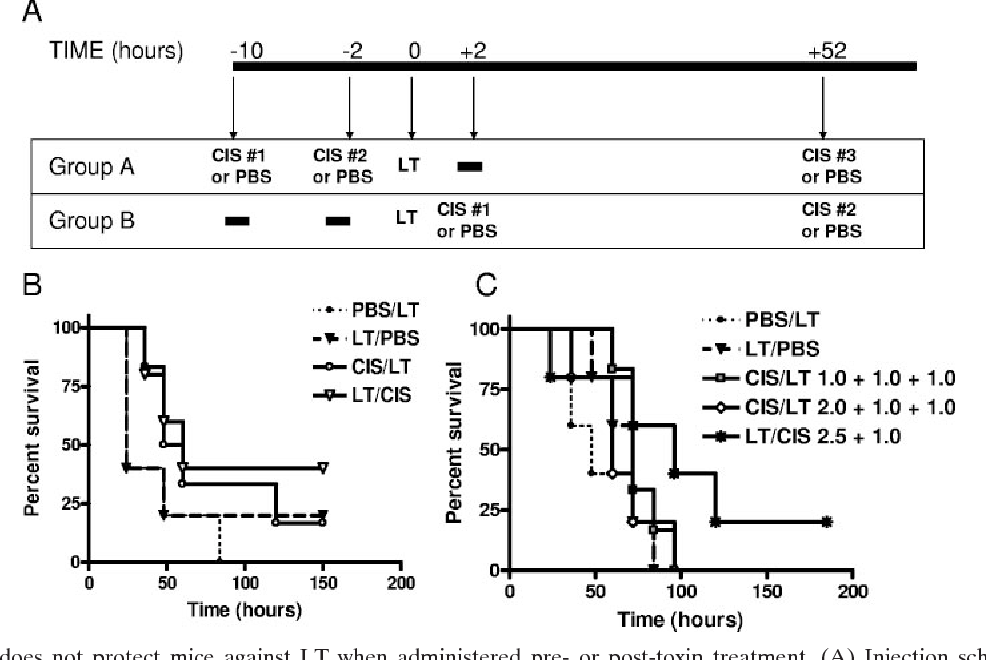Figure 7 from Cisplatin inhibition of anthrax lethal toxin