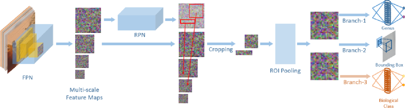Figure 2 for Multi-Target Deep Learning for Algal Detection and Classification