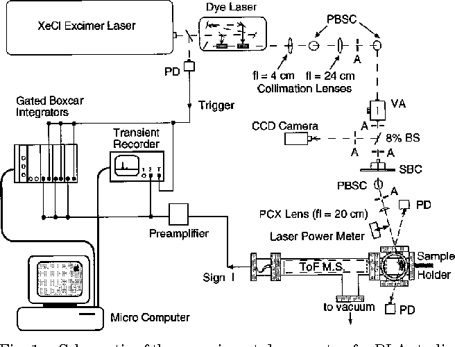 schematic of the experimental apparatus for rlastudies of copper  pbsc's,