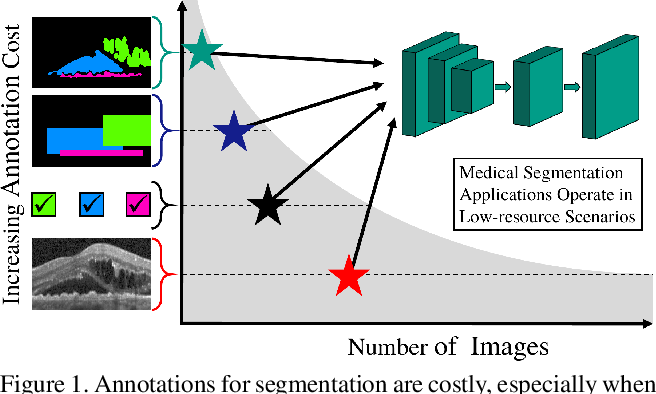Figure 1 for Every Annotation Counts: Multi-label Deep Supervision for Medical Image Segmentation