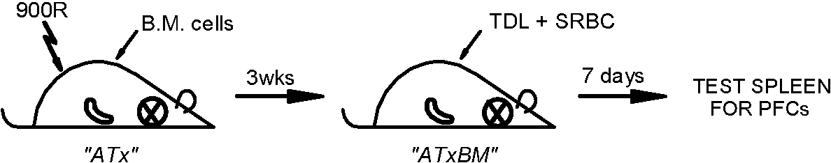 figure 13-2