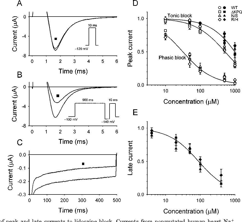 Pdf Mechanism Of Lidocaine Block Of Late Current In Long Q T Mutant