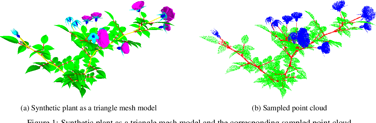 Figure 2 for Segmentation of structural parts of rosebush plants with 3D point-based deep learning methods