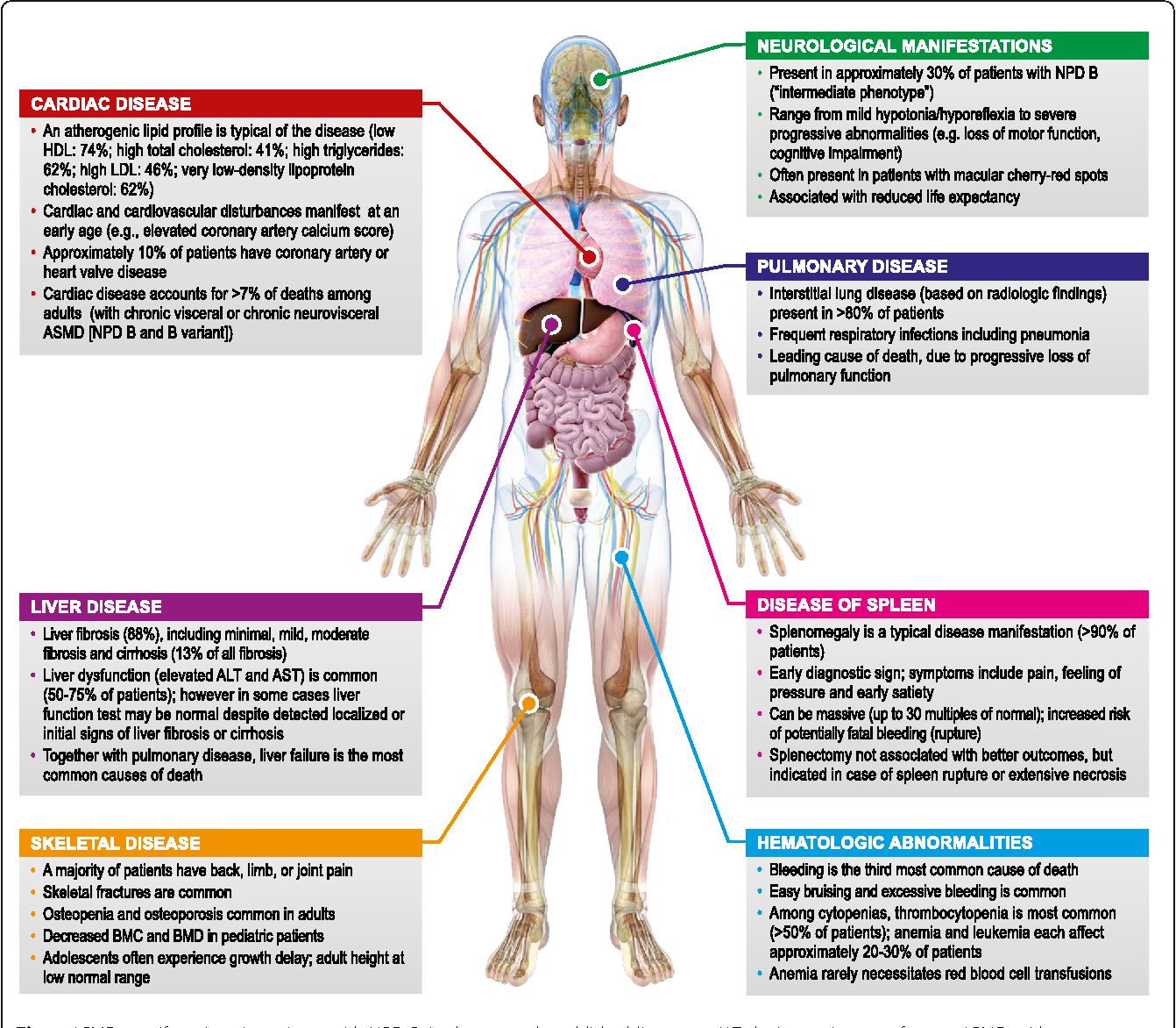 Disease Manifestations And Burden Of Illness In Patients With Acid