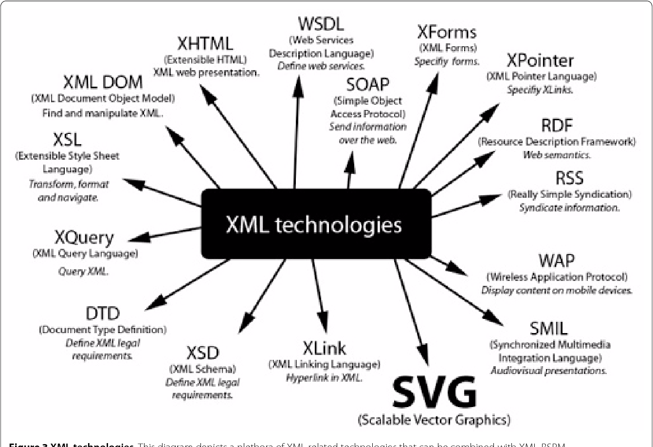 Figure 3 from XML-BSPM: an XML format for storing Body Surface