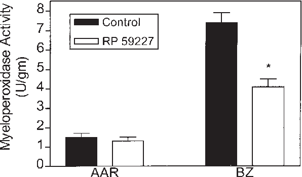 Fig. 4 Myeloperoxidase (MPO) activity in tissue taken from the area-atrisk distant from the infarct (AAR) and the border zone (BZ) adjacent to the infarcted tissue. *p < 0.05 vs. control group. Values are the mean ± SEM.
