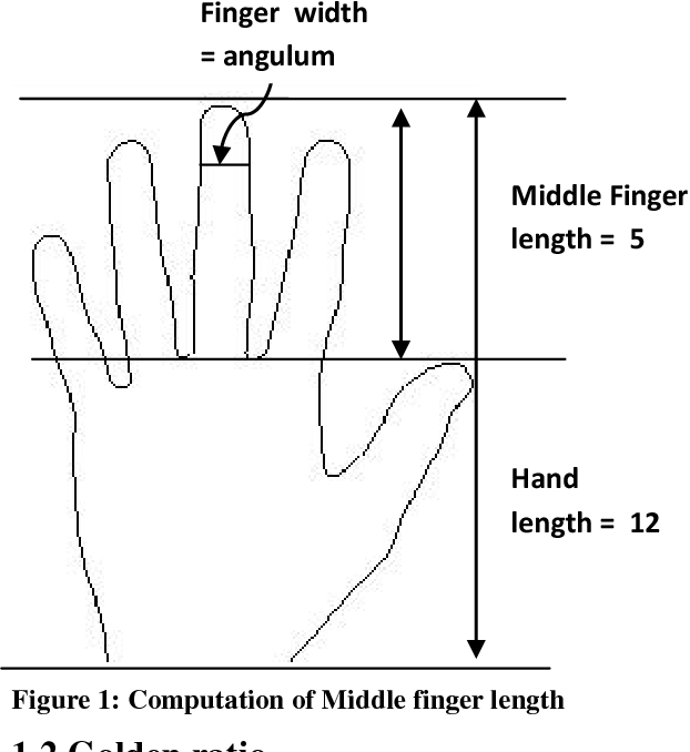 Distal Epiphysis Of Middle Phalanx Of Middle Finger Semantic Scholar
