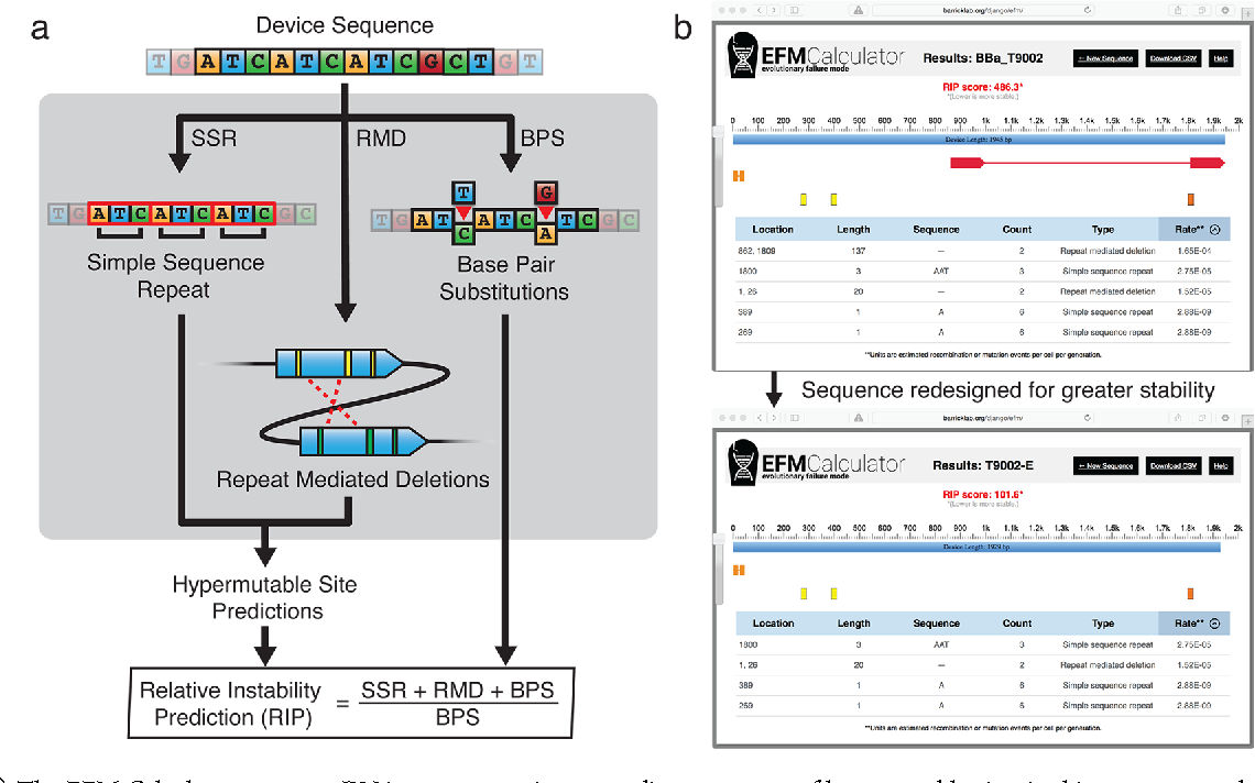 Predicting the genetic stability of engineered dna sequences with figure 1 ccuart Image collections