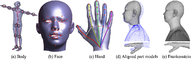Figure 2 for Total Capture: A 3D Deformation Model for Tracking Faces, Hands, and Bodies