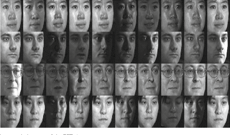 Fig. 3 The sample images of the PIE dataset