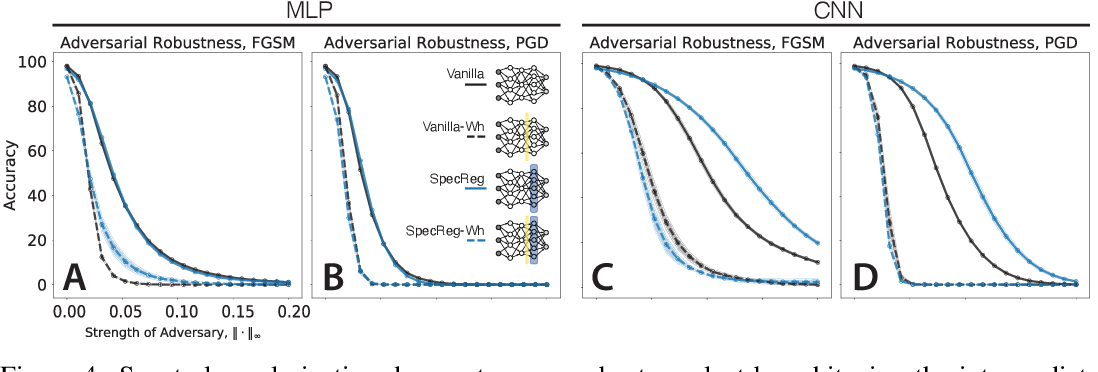 Figure 4 for On 1/n neural representation and robustness