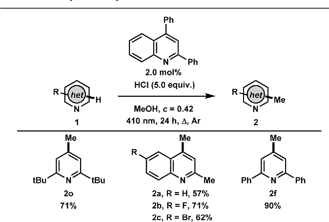 Table 4 Catalytic methylation of heteroarenesa
