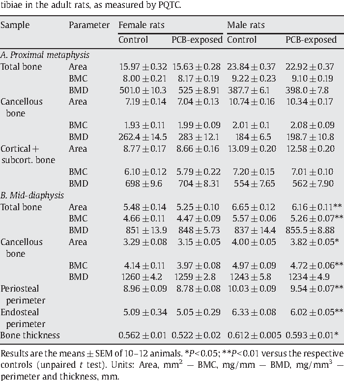 Table 4 Effects of exposure to PCBs during fetal development and breast-feeding on the bone structure at the proximal metaphysis (panel A) and the mid-diaphysis (panel B) of tibiae in the adult rats, as measured by PQTC.