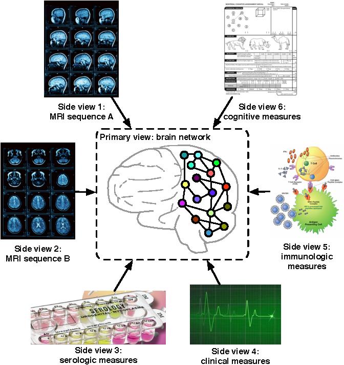 Figure 1 for Mining Brain Networks using Multiple Side Views for Neurological Disorder Identification