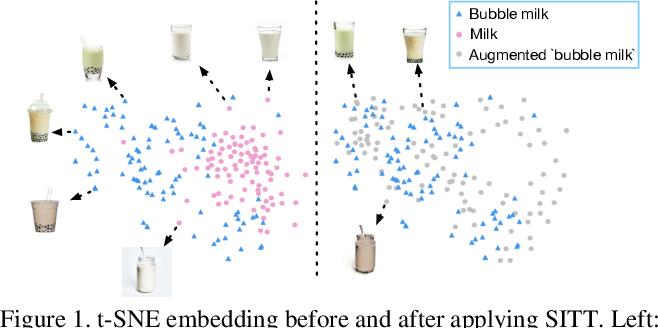 Figure 1 for Single Image Texture Translation for Data Augmentation