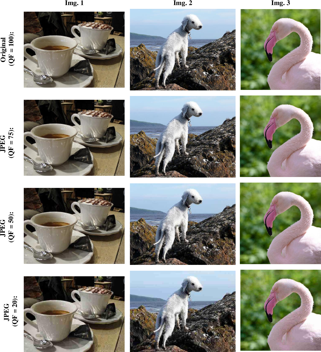 Figure 2 for Feature Distillation: DNN-Oriented JPEG Compression Against Adversarial Examples