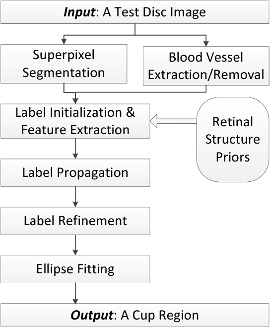 Fig. 1. Flowchart of the proposed cup localization approach using regional propagation based on retinal structure priors.