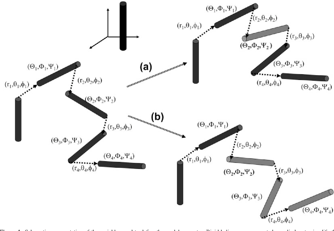 Evolutionary Method For The Assembly Of Rigid Protein Fragments Figure 1