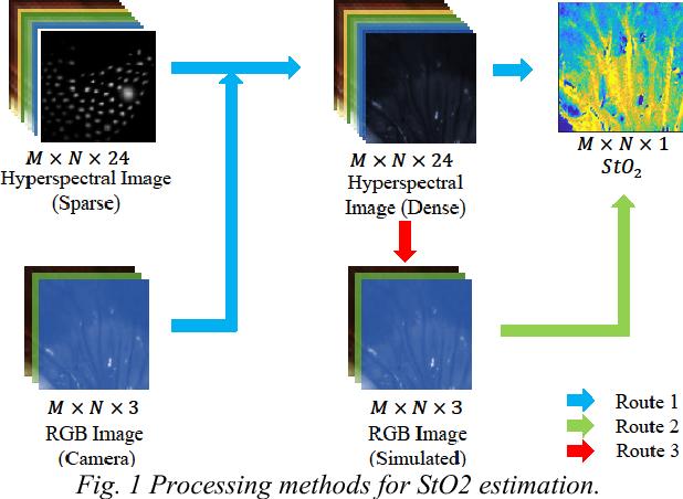 Figure 1 for Estimation of Tissue Oxygen Saturation from RGB Images based on Pixel-level Image Translation