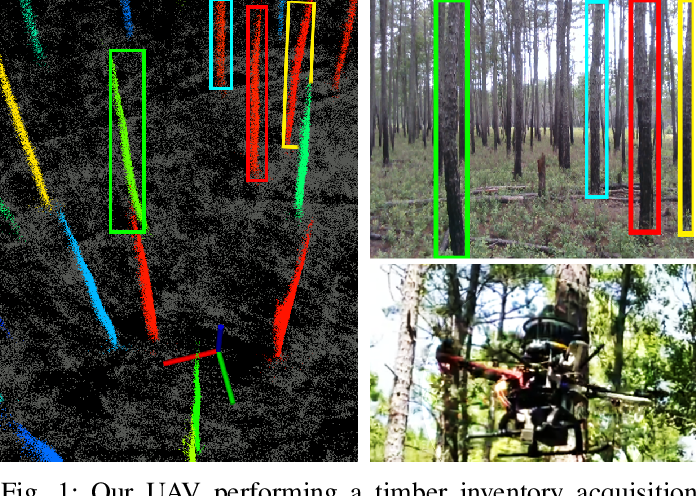 Figure 1 for SLOAM: Semantic Lidar Odometry and Mapping for Forest Inventory