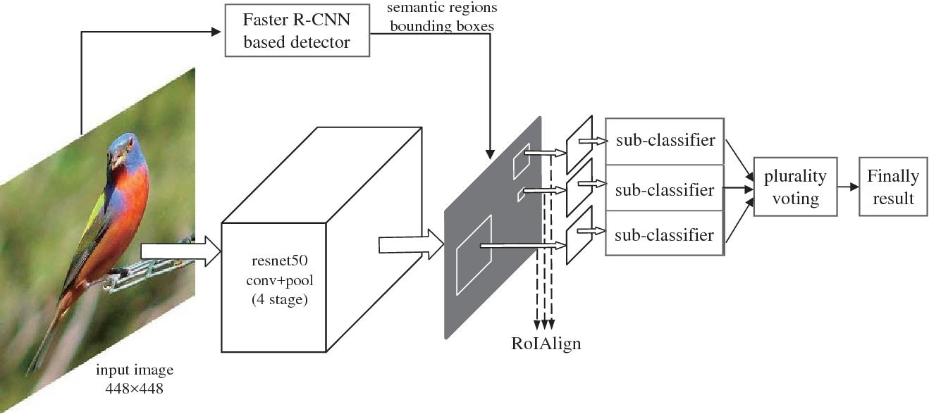Figure 1 for Region based Ensemble Learning Network for Fine-grained Classification